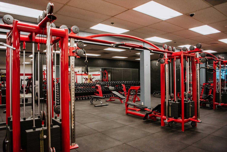 body-building-equipment
